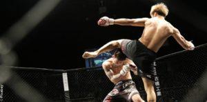 MMA : Appel à Manifestation d'Intérêt – nouveau délai